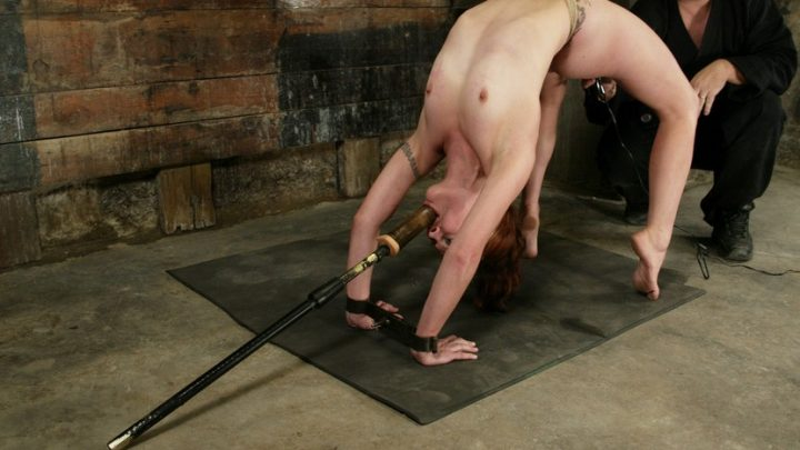 Hogtied.com – Carly Carly 2004 Domination