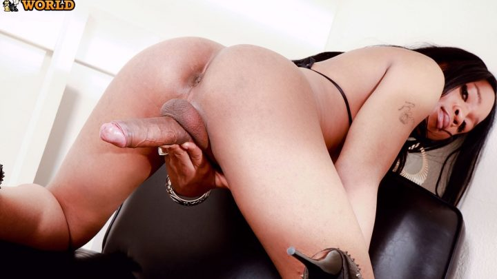 Franks-tgirlworld.com – Big Dick Gabriella Gabriella 2011 Transsexual